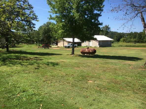 5556 Whitehouse Rd., Jasper, AL 35501 Photo 8