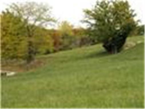 13105 W. 54th St., Shawnee, KS 66216 Photo 1