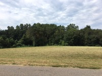 Home for sale: Lot 24 Carriage Ln., Lincolnton, NC 28092