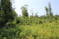 Home for sale: Lot #3, Hunlock Creek, PA 18621