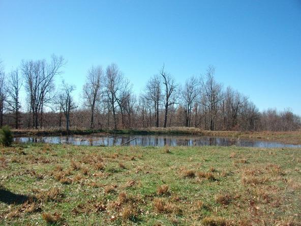 1059 Pleasant Run Rd., Mammoth Spring, AR 72554 Photo 20