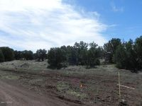 Home for sale: Hwy. 60, Show Low, AZ 85901