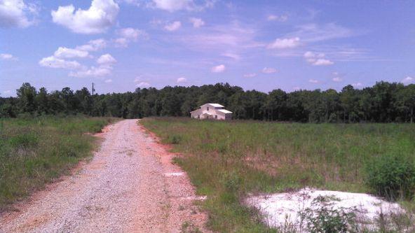 11744 County Rd. 53, Columbia, AL 36319 Photo 7