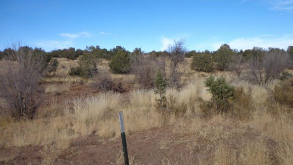 211 Juniperwood Rnch Un 3 Lot 211, Ash Fork, AZ 86320 Photo 19