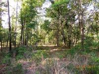 Home for sale: N.W. Cr 138, Branford, FL 32008