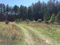 Home for sale: 980 Opry House Rd., Starr, SC 29684