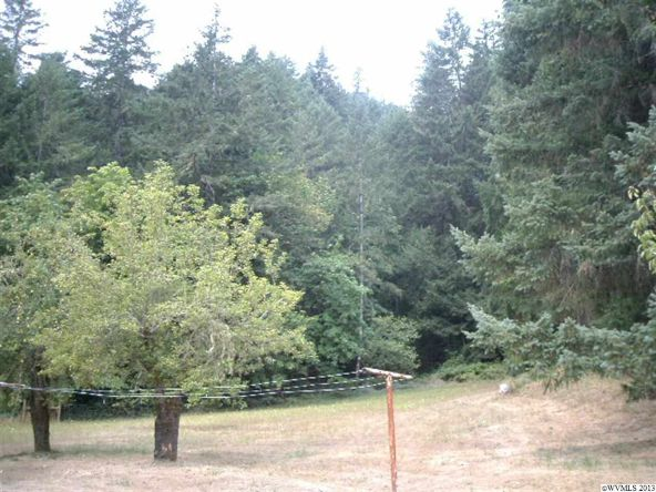 5833 Hubbard Creek Rd., Umpqua, OR 97486 Photo 13