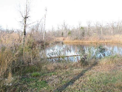 32747 Nikki Ln., Wilmington, IL 60481 Photo 8