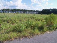 Home for sale: Nicholls, GA 31554