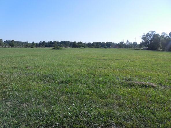 6028 County Rd. 565, Hanceville, AL 35077 Photo 5