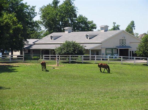 3211 Maria Dr., Lexington, KY 40516 Photo 21