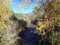 Home for sale: Lot 32 Turley Mills Duval Rd., Valdez, NM 87580