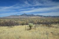 Home for sale: Tbd Camino Nacozari, Tubac, AZ 85646