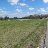 Home for sale: Cedar Bend Rd., Southside, AL 35907