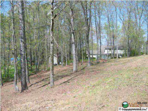 7 Cedar Ln., Guntersville, AL 35976 Photo 3