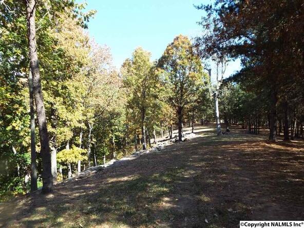 10 S. County Rd. 89, Mentone, AL 35984 Photo 12