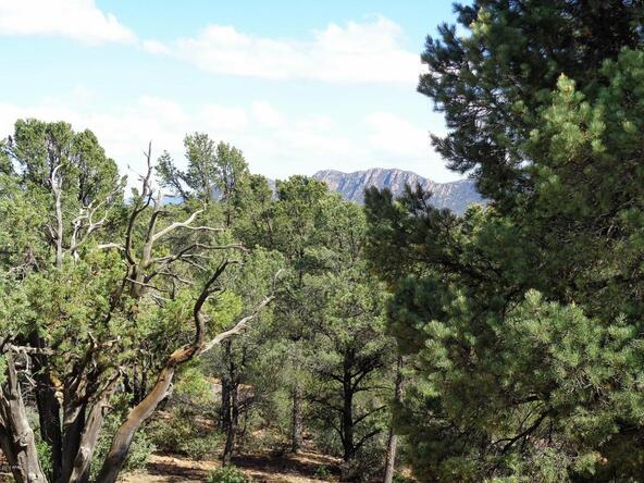 1406 E. Tranquility Point, Payson, AZ 85541 Photo 90