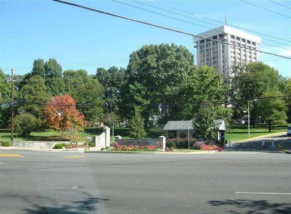 220 Cedar, Lexington, KY 40508 Photo 15
