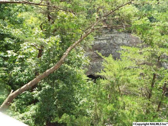 984 County Rd. 613, Mentone, AL 35984 Photo 18