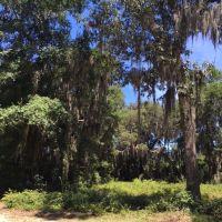 Home for sale: Parcel 6 Osprey Ct., Shellman Bluff, GA 31331