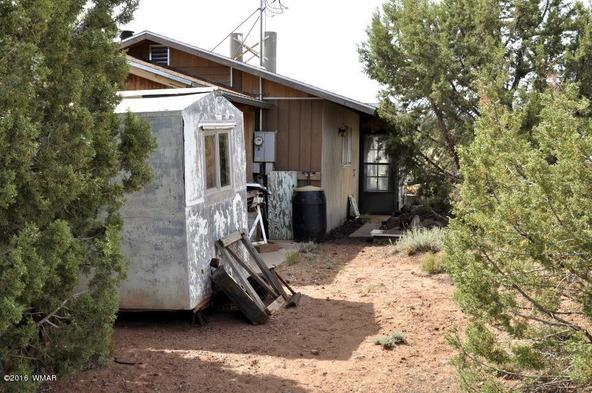 3904, 3903 Apache Rd., Snowflake, AZ 85937 Photo 67