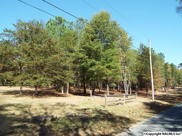 12 S. County Rd. 89, Mentone, AL 35984 Photo 12