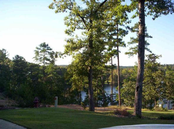 201-200 Lake Forest Shores, Hot Springs, AR 71913 Photo 8