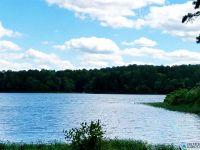 Home for sale: Stillwaters Trl, Sylacauga, AL 35151