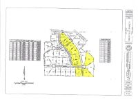 Home for sale: Lot 22 County Rd. 688, Chancellor, AL 36316