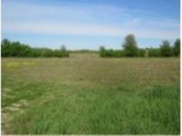 Home for sale: Lot 1 Hwy. F, Berlin, WI 54923