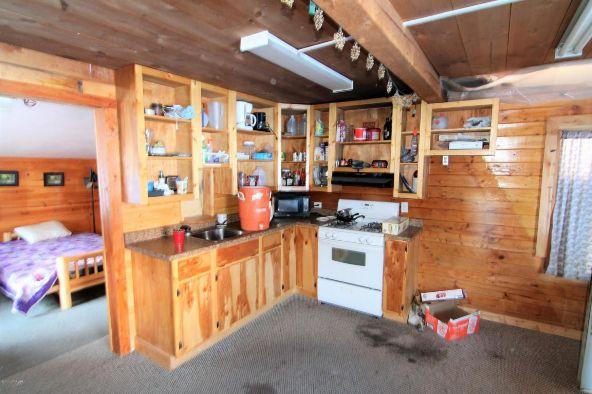 25683 S. Trail Ridge Rd., Trapper Creek, AK 99683 Photo 64