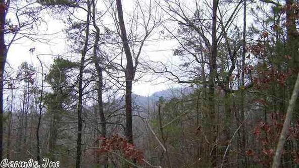 45 Crows Nest, Hot Springs Village, AR 71909 Photo 34