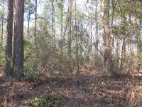 Home for sale: 0 Buster Miller Rd., Statesboro, GA 30461