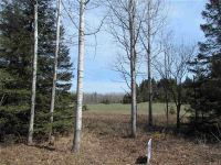 Home for sale: Nikodem Ln., Abrams, WI 54101