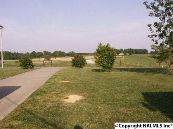3372 County Rd. 52, Rogersville, AL 35652 Photo 24