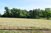 Home for sale: Lot 51 West Lake Rd. Dr., Cassville, MO 65625