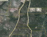 Home for sale: Lot A3 Planters Dr., Paxton, FL 32538