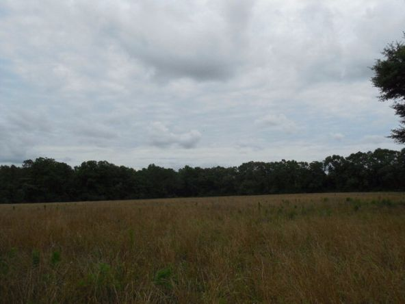 7.8acres Hardy Rd., Rehobeth, AL 36301 Photo 7