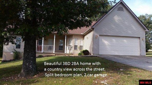 222 Red Bud Rd., Gassville, AR 72635 Photo 1