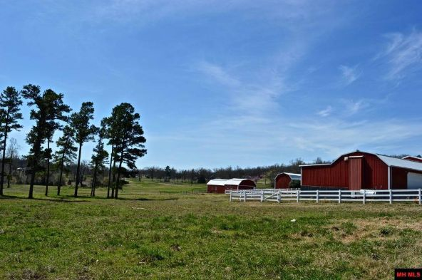 7493 Hwy. 201 South, Mountain Home, AR 72653 Photo 8