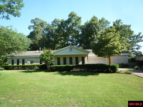 480 Jims Rd., Lakeview, AR 72642 Photo 1