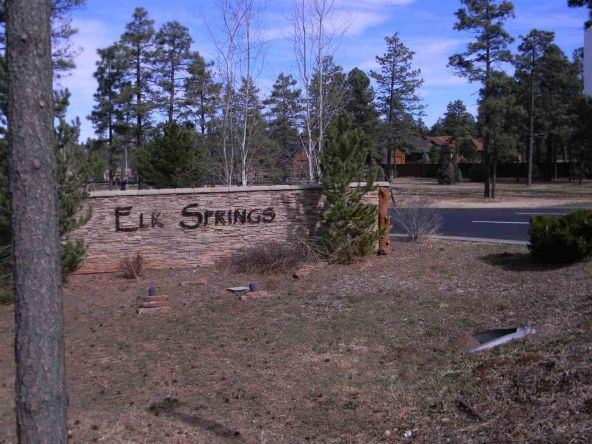 5434 E. S. Elk Springs, Lakeside, AZ 85929 Photo 2