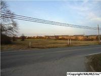 Home for sale: 2090 Alabama Hwy. 205, Albertville, AL 35950