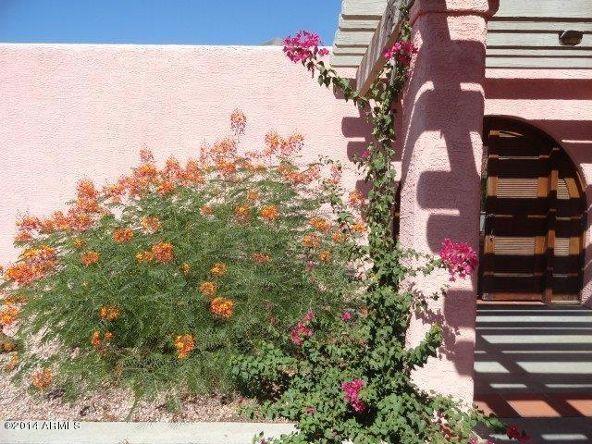 50910 W. Iver Rd. W, Aguila, AZ 85320 Photo 66