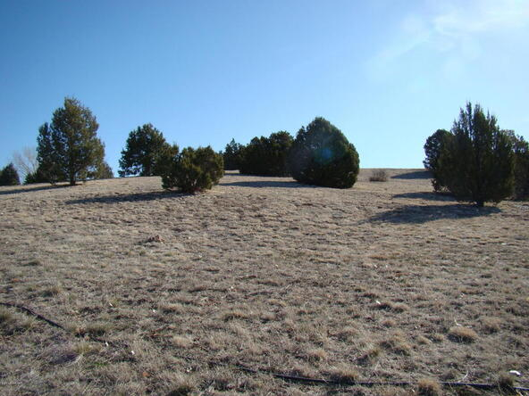 1185 Arrowhead Pass, Show Low, AZ 85901 Photo 7