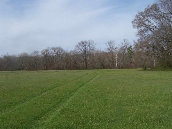 24 Acres Glazypeau Rd., Murfreesboro, AR 71958 Photo 5