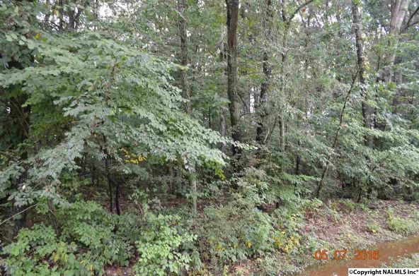 101 Hastings Rd., Athens, AL 35613 Photo 4