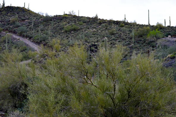 374xx N. Schoolhouse Rd., Cave Creek, AZ 85331 Photo 17