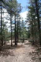 Home for sale: Hwy. 512, Millstone Lot 49, Chama, NM 87520
