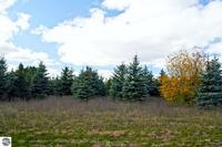 Home for sale: 0022 Lipp Farm Rd., Benzonia, MI 49616